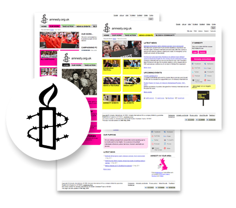case study amnesty international view of website