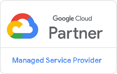 Google MSP partner